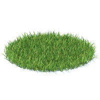 3D model shaped grass