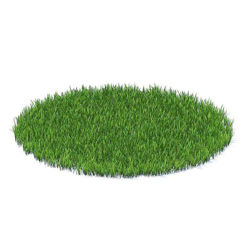 shaped short grass model