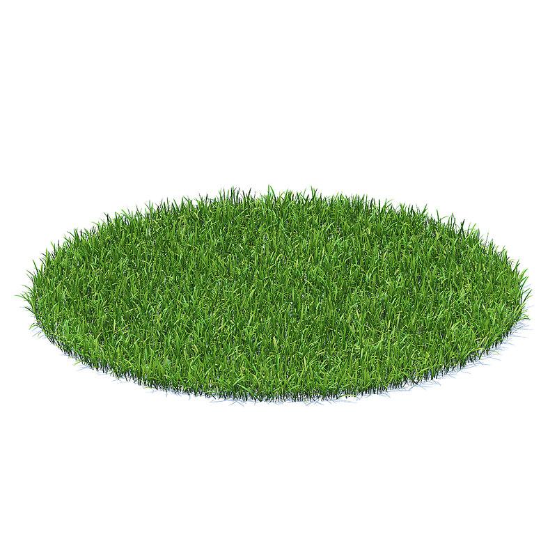 shaped short grass 3D