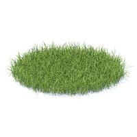 tall grass model