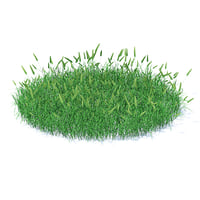3D shaped flowering grass
