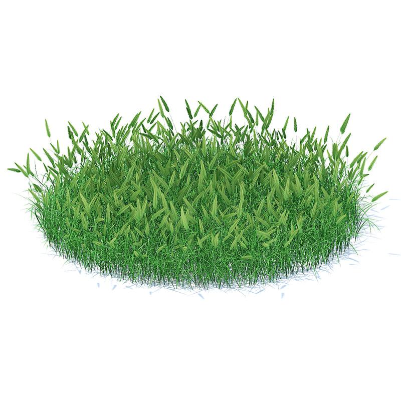 shaped flowering grass model