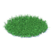 3D model shaped grass clover