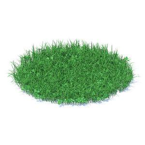 3D model shaped grass clover