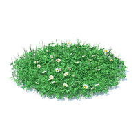 3D shaped grass clover model