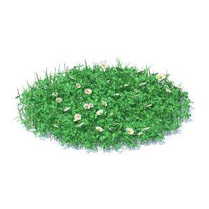 3D shaped grass clover model