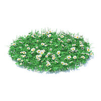 3D shaped grass clover