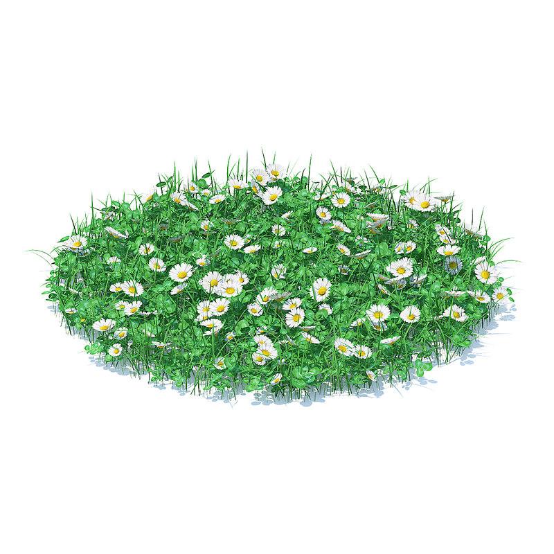 3D shaped grass clover