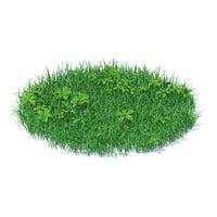 grass plants 3D model