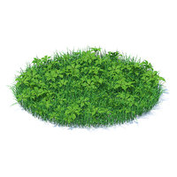3D model shaped grass plants