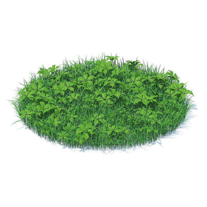 3D model shaped grass plants