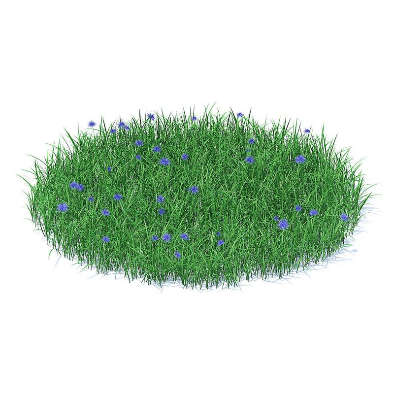 shaped grass cornflowers 3D