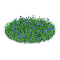 shaped grass cornflowers model