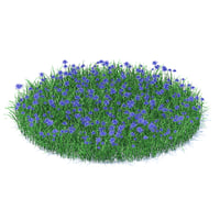 3D model shaped grass cornflowers