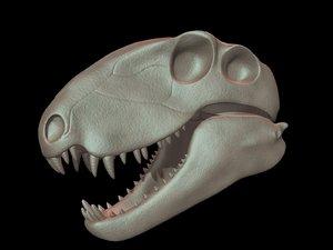 dimetrodon skull 3D