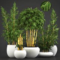 3D golden bamboo trees