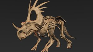 styracosaurus skeleton 3D model