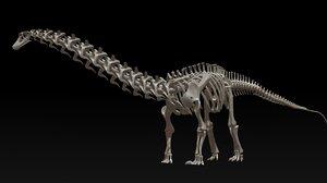 3D diplodocus skeleton