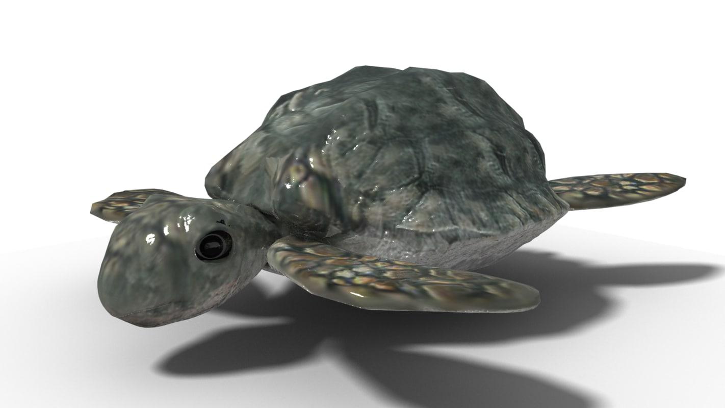 blender turtle 3D model
