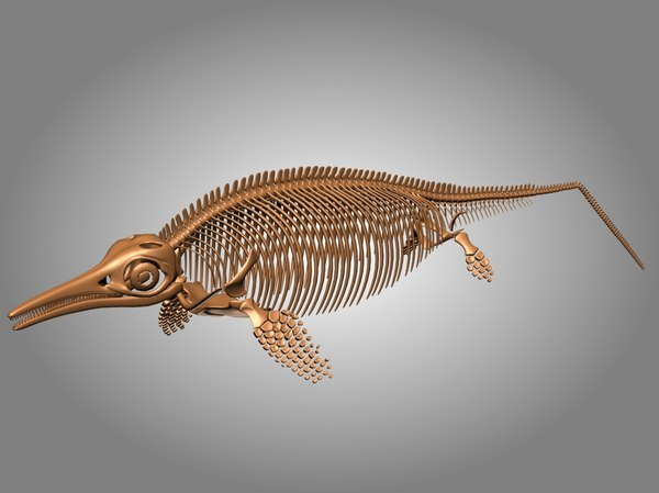 ichthyosaurus skeleton 3D