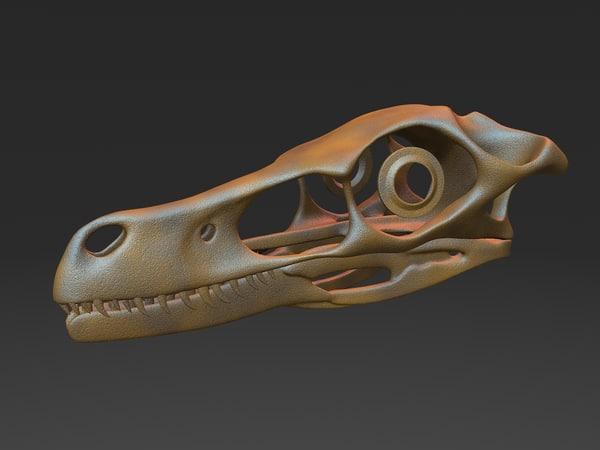 3D velociraptor skull
