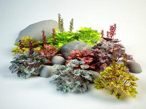 coral bells flowering 3D model