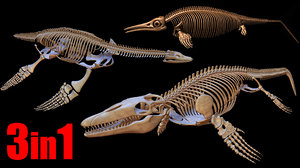extinct aquatic reptiles 3D model