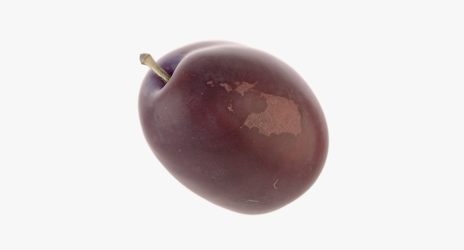 3D realistic plum model