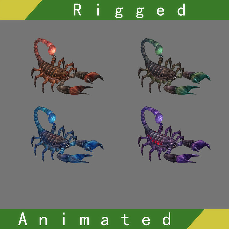 scorpion rigged animations 3D model