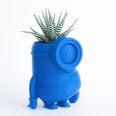 3D pot form minion print