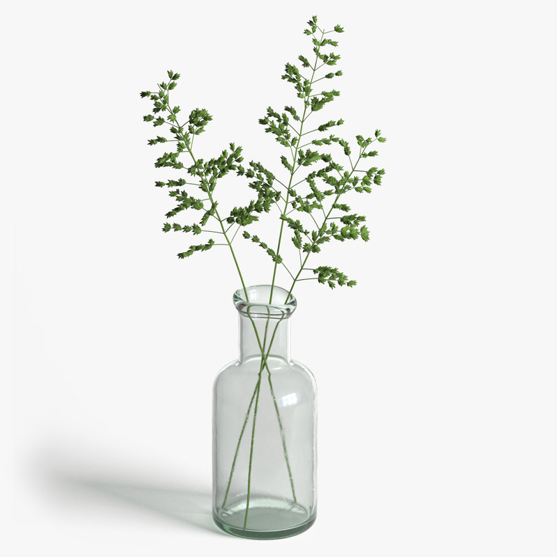photorealistic grass plant model