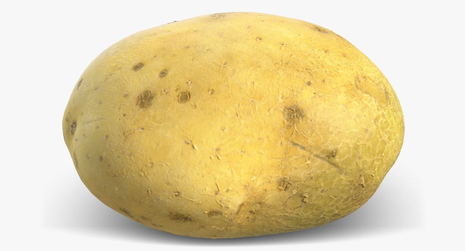 3D model potato raw 2