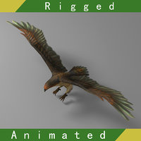 3D eagle rigged 01 animations
