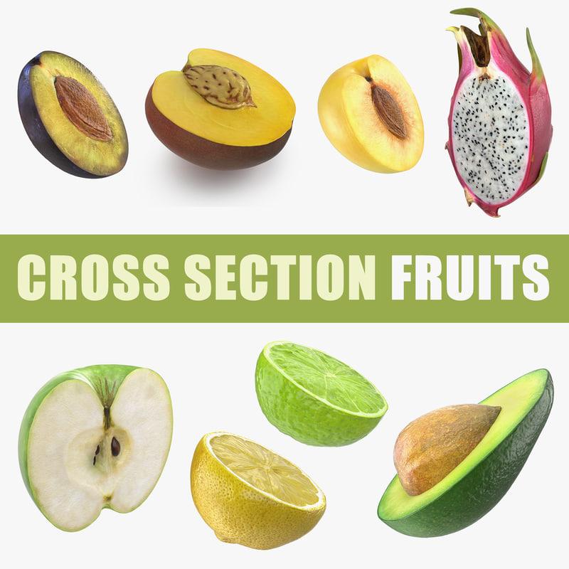 cross section fruits 3 3D model