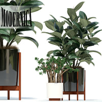3D plants 72 modernica pots model