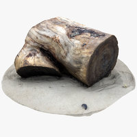 3D rustic wood stump 1