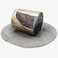 rustic wood stump 3 3D model
