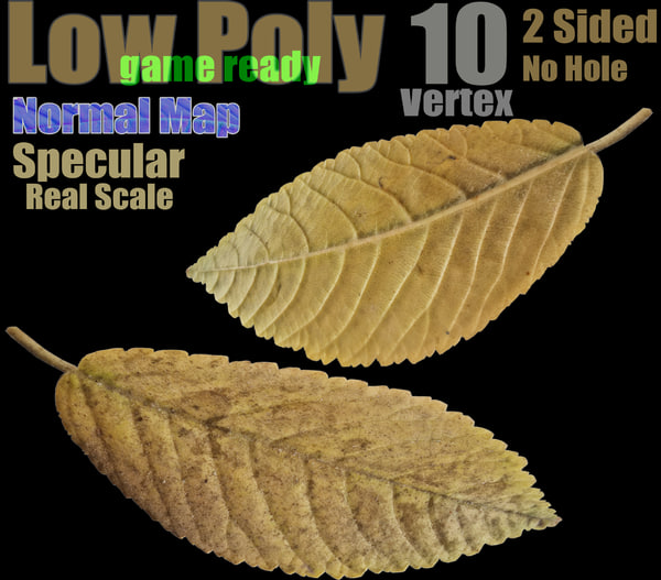 yellow autumn leaf 3D