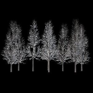 winter tree 018 3D model