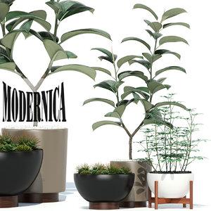 plants 73 modernica pots 3D model