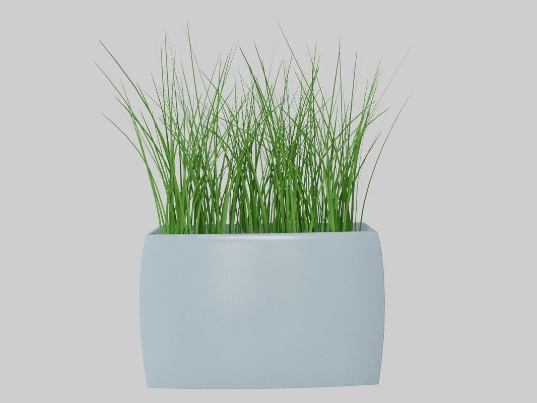 3D vases decorative grass