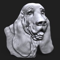 basset hound dog head 3D model