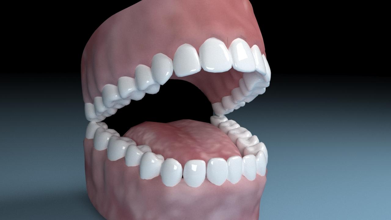 teeth tongue mouth interior 3D