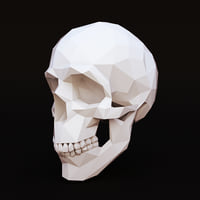 Low Poly Skull Human