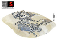 rocky coral beach ultra 3D model