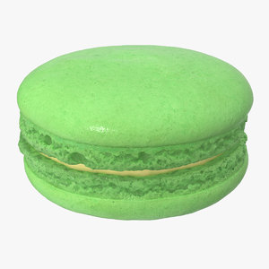 classic french macaron model