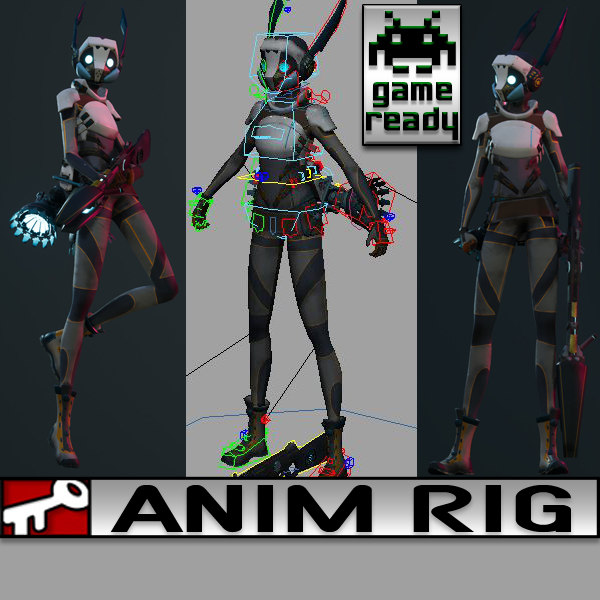 3D rig 2014 animation