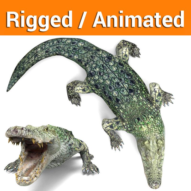 3D crocodile rigged animation