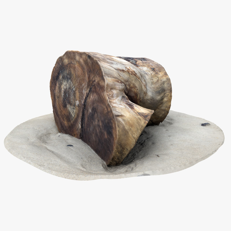 3D rustic wood stumps model