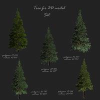 Tree fir 3D model